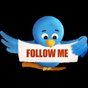 Twitter-bird-5-300x300